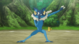 ash frogadier