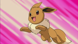 May Eevee