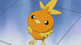 NurseJoy Torchic